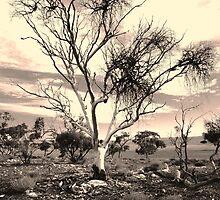The Poisoned Kiss of Mistletoe by Kazzii