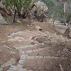 Winter Climb to Flinders Peak, You Yangs by DianneLac