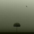 Imagine... by Julian Escardo