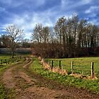 country road by claudio galvan
