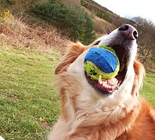 saz...has the ball by xxnatbxx