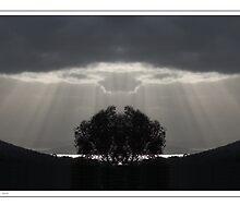 Sunrise Over the River Derwent by Paul Barrington