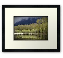 Trees of Spring Framed Print