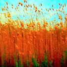 Impressionistic Gallery - Red Gold Wheatfield by Igor Shrayer