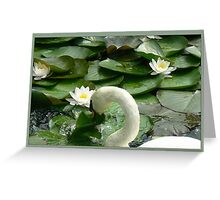 swan mad in pond Greeting Card
