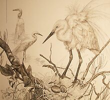 Egrets and hidden nestling by Laura Grogan