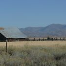 Old Shed near Jackson with Stunning Backdrop. by Mywildscapepics