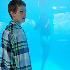 """Candid / Who's Taller? You or Shamu?"" San Diego Oceans Foundation; Dinner & Show with Shamu, San Diego, CA USA by leih2008"