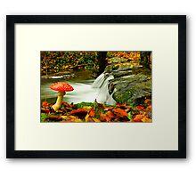 Fall Season Framed Print
