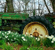 Old John Deere and Daffodils by Peggy Berger