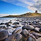 Dunstanburgh Castle - Northumberland Coast by David Lewins LRPS