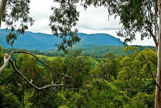 Glenda's View by JimMcleod