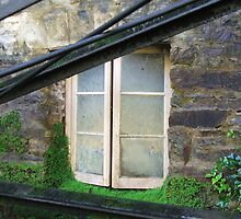 The Damp Window by ScenerybyDesign