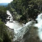 Ebor Falls Pano by Annette Blattman