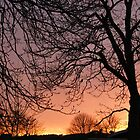 Burning Sunset - Pathway to Kingsmeadows, Peebles by Sophie MacLeod