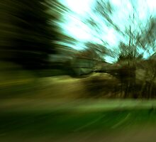 The blur of motion. by Ruth  Jones