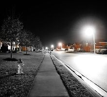 Night- American Subdivision by Joseph Dassaro