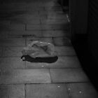 Bag on my bedroom floor by Ecohippy