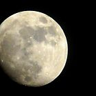 Nearly Full Moon by MaeBelle