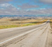 Montana Highway with Low Cloud Ceiling by Stacey Lynn Payne
