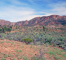 The Heysen Range, Flinders Ranges, South Australia by Adrian Paul