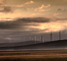 Lake George Wind farm. by DaveBassett