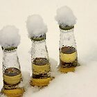 Three Coronas by John Butler