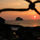 Cornwall: Sunset Through the Fishing Net by Rob Parsons