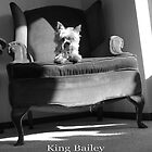 King Bailey by Theodore Kemp
