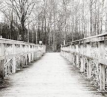 Winter Boardwalk by StefBrown