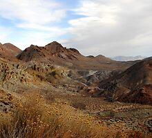Death Valley Vista by Karen Zimmerman