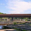 Harpersfield Covered Bridge by Monnie Ryan
