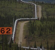 Alaskan Pipe Line by ngrant
