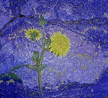 Dandelion Abstract by Ann Warrenton