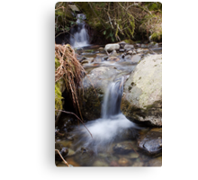 A Gentle Flow Canvas Print