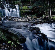 Liffey Falls, Tasmania, Australia by Cameron Gray