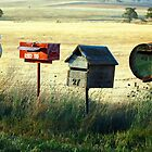 ~You've  Got Mail~ by Julie-Anne Wagner