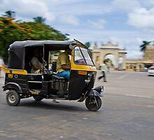 Rickshaw in Motion by Nila Newsom