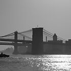 Brooklyn Bridge, &; Manhattan Bridge by pmarella