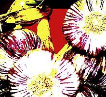 Onions Veggies 4 by Dominique Meynier