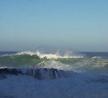 Northshore Hawaii 20+ wave by revdrrenee
