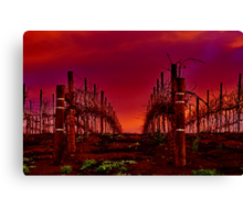 """""""Winter In The Vines"""" Canvas Print"""