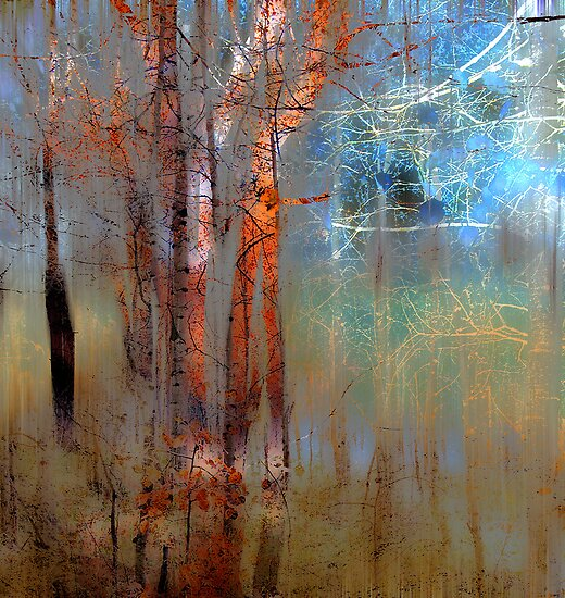 844 by peter holme III