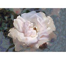 White Klimt Rendition Photographic Print