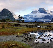 Mitre Peak in the Morning by Wendy  Meder