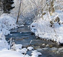 Winter creek by Nordlys