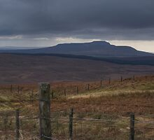 Ingleborough Hill by druidsnectar