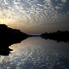 Niger River Reflections by helenlloyd