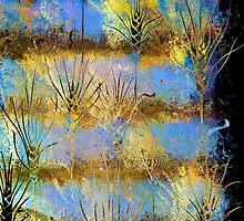 Fields of Gold by wiscbackroadz