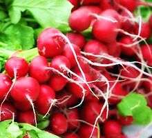 Radishes by Annee Olden
